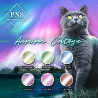 PNS Aurora/Cat-eye Gelpolish