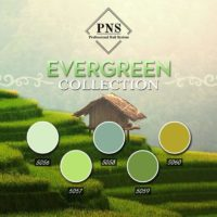 PNS Evergreen Collection